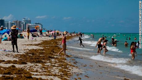 As Florida emerges from shutdown, Covid-19 cases surge