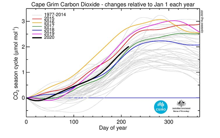 Daily baseline values for CO₂ for each year from 1977 relative to 1 January for that year
