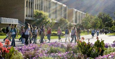 BYU, Utah, Utah State self-report 245 cases of COVID-19 from 'campus community'