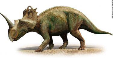 Dinosaur diagnosed with malignant cancer that still afflicts humans today