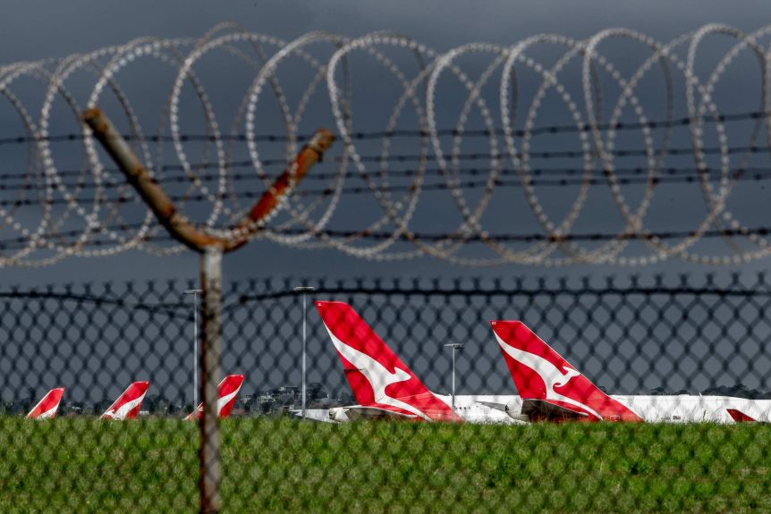 Qantas planes can be seen through a fence sitting in an airport.