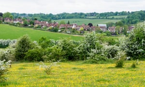 Homes near Farthing Downs, Surrey