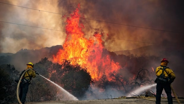 Hundreds have been taken to safety in California as wildfires raged
