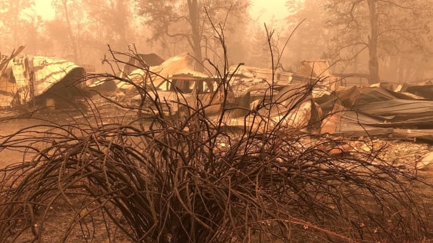 The search for survivors continues as wildfires rage in the western United States, and officials warn of heavy casualties