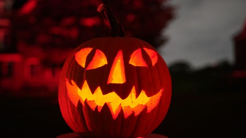 Fun and family-friendly Halloween events planned in Tampa Bay