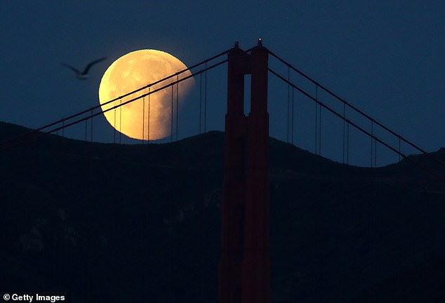 Halloween treating the whole world as a rare Blue Moon has been a TOMORROW through all time