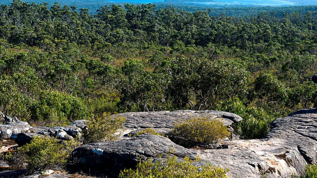 A mother, 38, fell to her death while standing for a photo in Australia: report