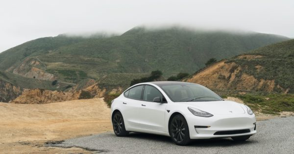 From goat noises to swell: Tesla's latest update makes it entertainment on wheels