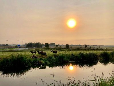The Netherlands will not have to deal with the smoke from the US wildfires