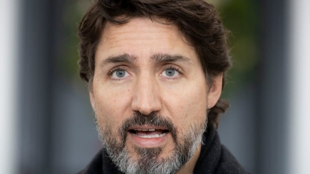 Trudeau says 249,000 vaccine doses will arrive in Canada by the end of the year