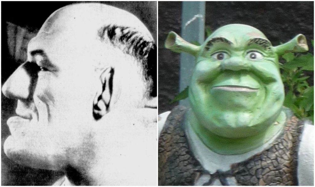 Shrek's appearance may depend on the French wrestler