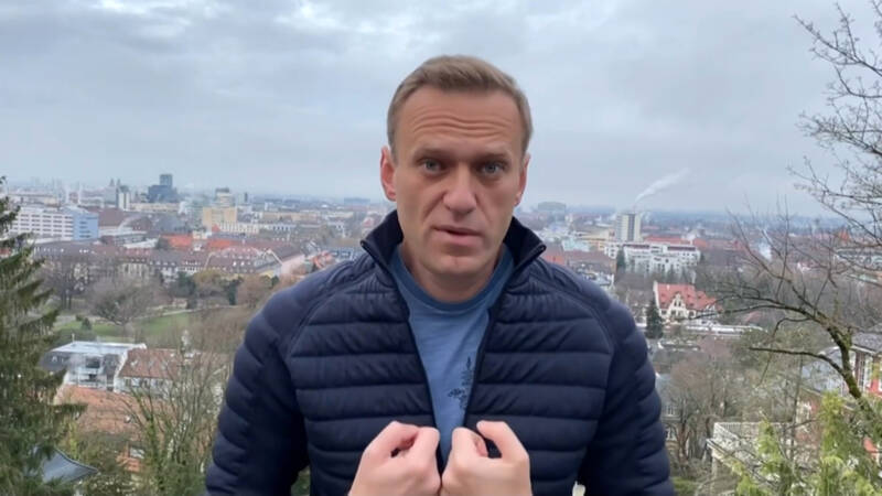 Ali Navalny was detained in Moscow the day before the opposition leader returned