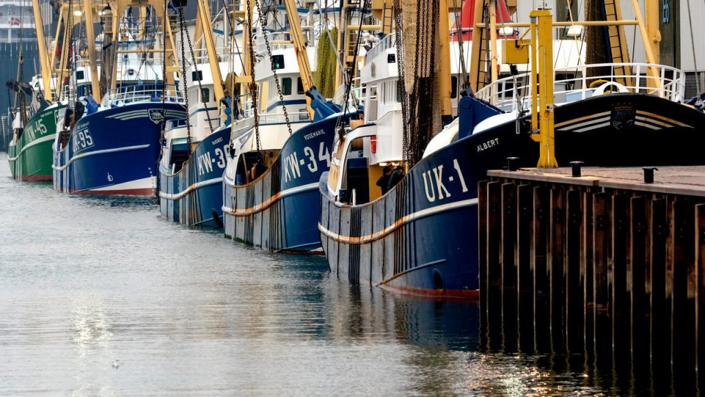 Dutch fishermen only fear additional controls from the British |  right Now