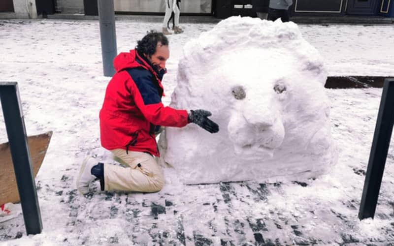 A homeless Moroccan attracts attention with the Brussels Snow Lion