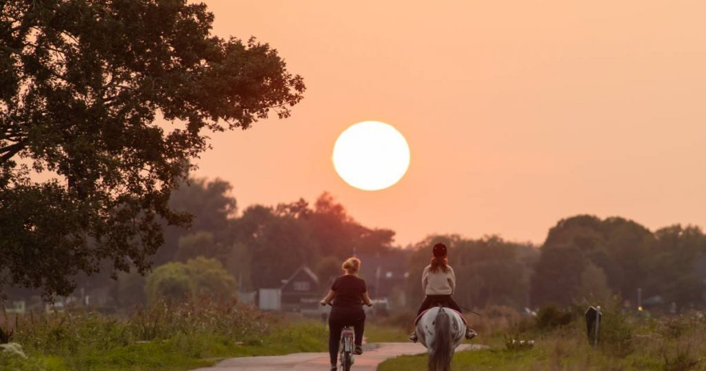Smoke from wildfires in the western United States creates colorful skies in the Netherlands |  Interior