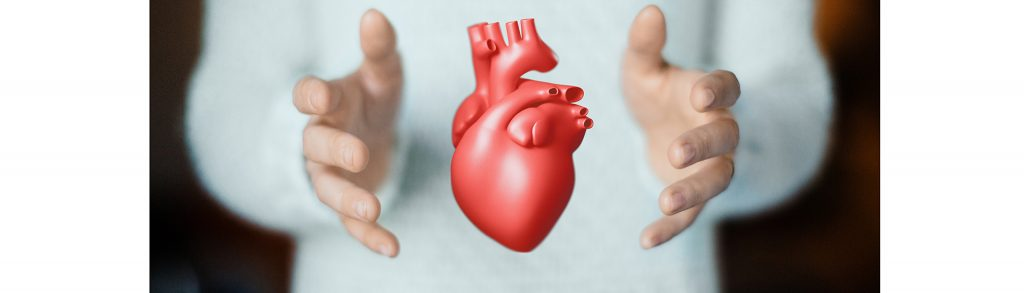 The heart is of sufficient quality for transplantation after euthanasia