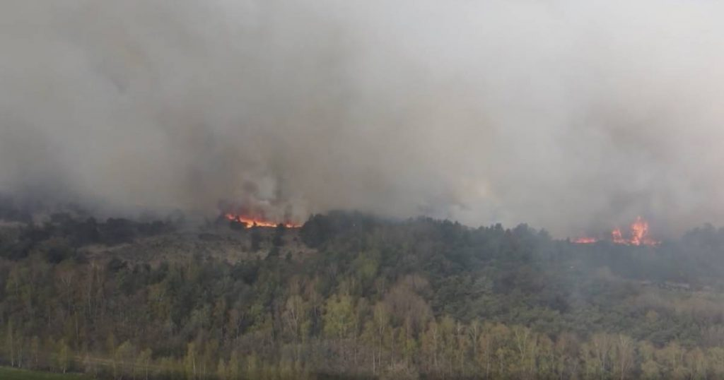 Control of a major fire in the Belgian nature reserve across the border in Zendert and evacuees allowed to return home |  112 and crime