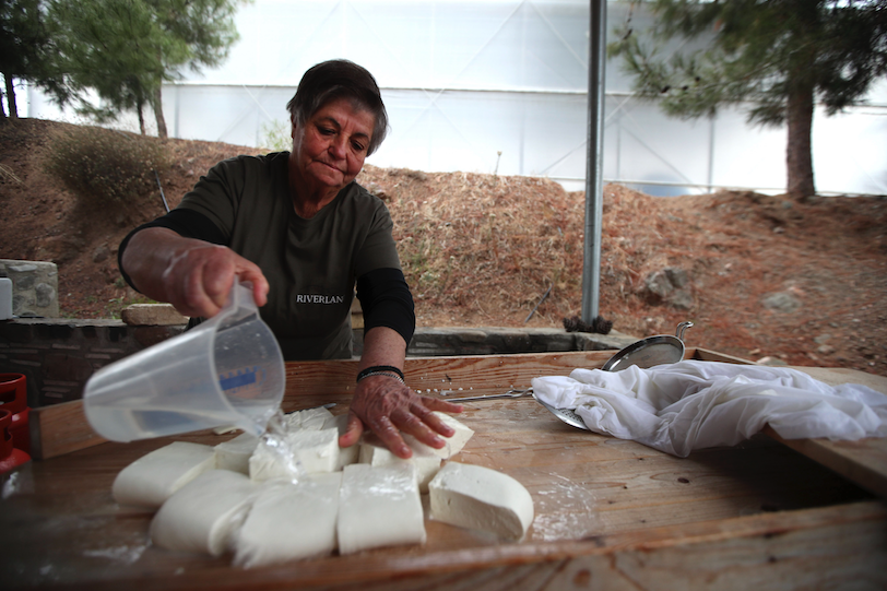 Cyprus is satisfied that halloumi cheese is more protected