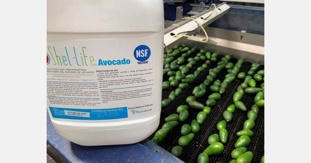 Avocado is strong for 50 days thanks to its natural coating
