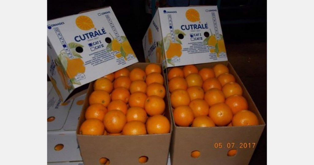 A Brazilian orange growers group file a lawsuit against Cutrale across the UK