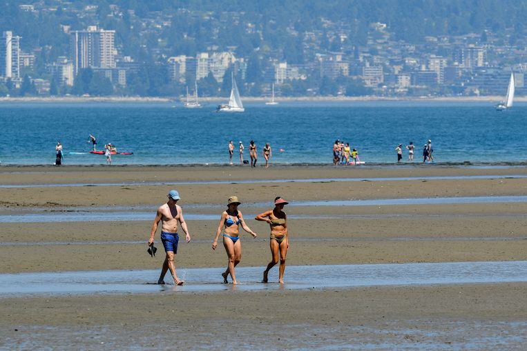 """A """"dangerous and historic"""" heat wave swept through western Canada: temperatures reached 46 degrees and 46 degrees"""