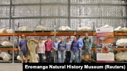 "Research team standing with bone ""Kuiper"" (Eromanga Museum of Natural History / Distribution via Reuters)"