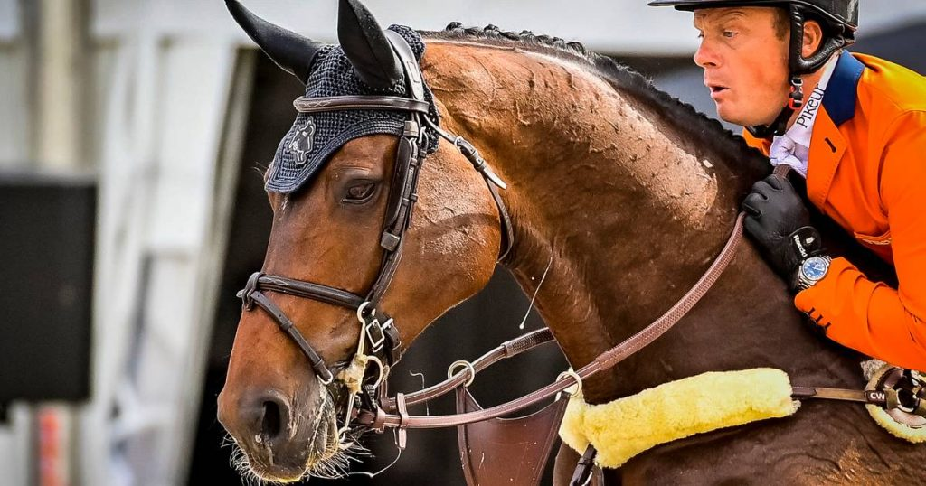 Show jumper Greve shines in winning country competition CHIO Rotterdam |  sport