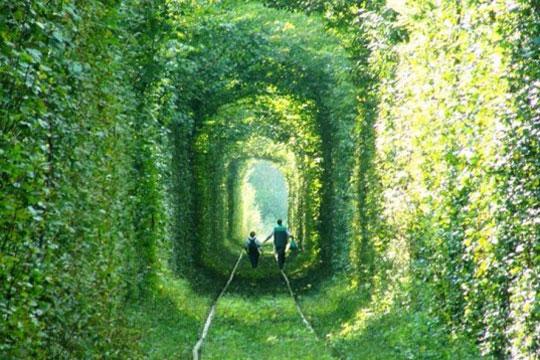 Tunnel of love Akrin