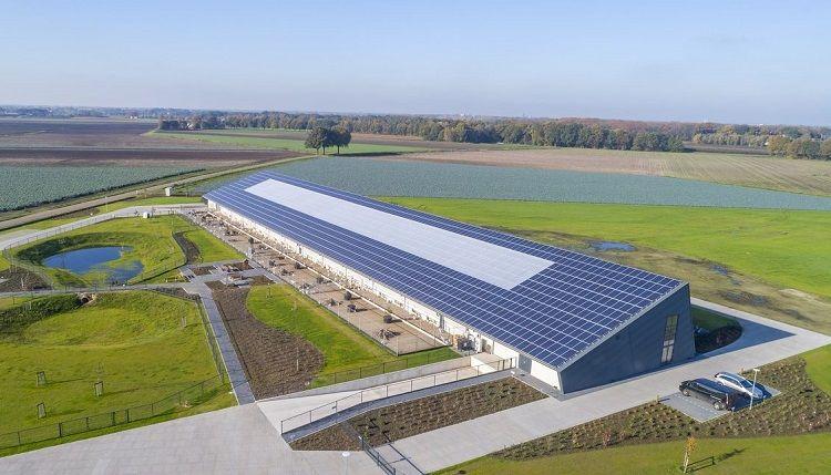 Kipster farm_photo press release