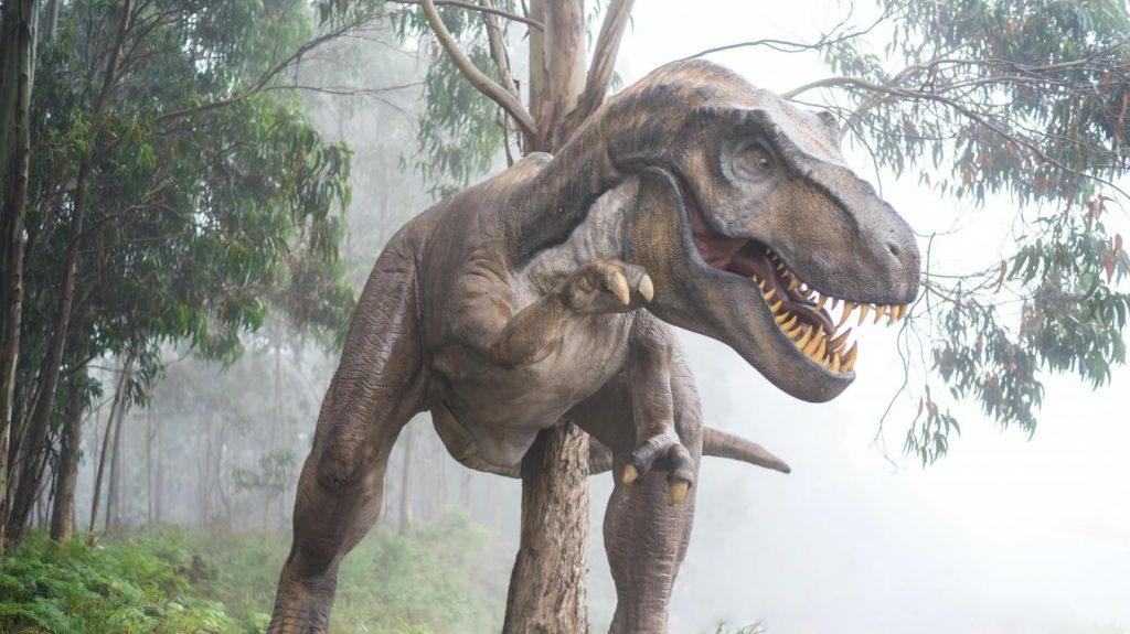Museum voor Natuurwetenschappen in Brussel pakt uit met t. rex-tentoonstelling